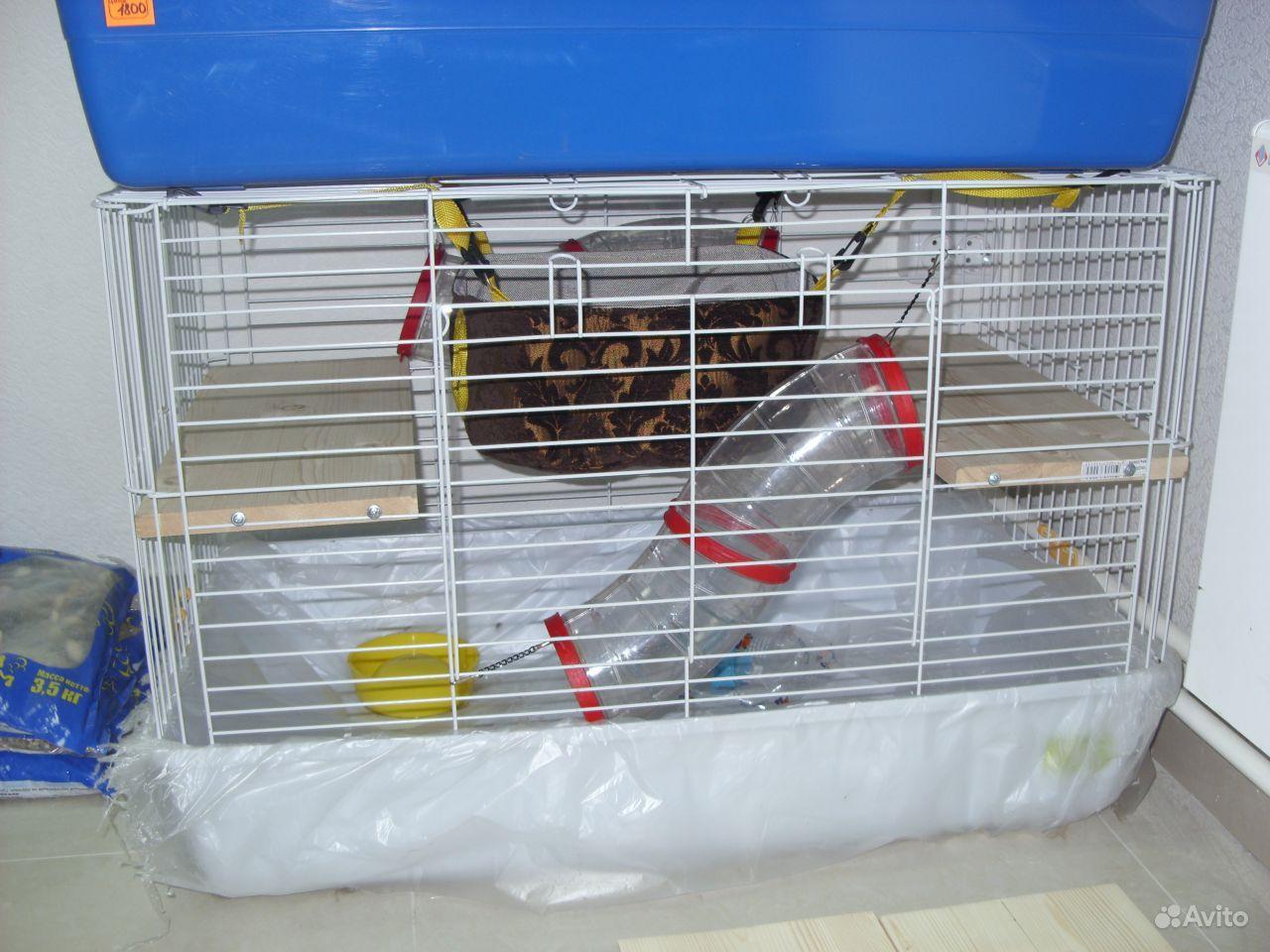 Клетка витрина для шиншилл, дегу - купить - Avito ru