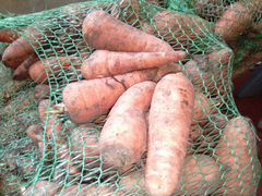 Морковь на корм скоту
