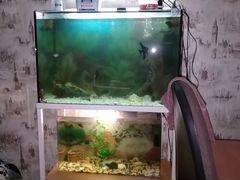 Два аквариума с подставкой 8000тысяч продам