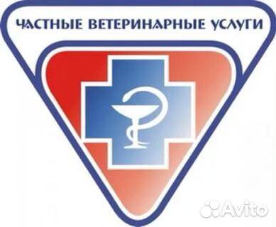Телефон регистратуры кингисеппской поликлиники