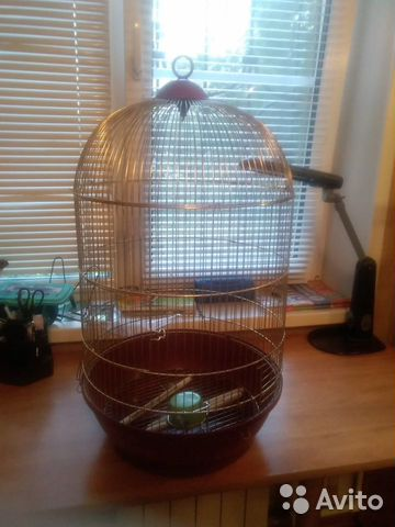 Bird cage  89103591036 köp 3