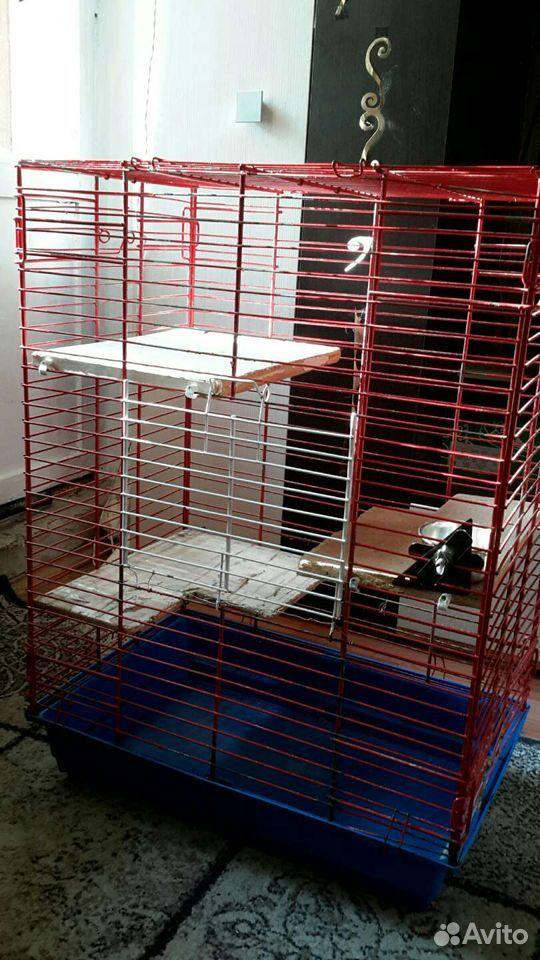 Клетка для грызунов  89633218399 купить 2