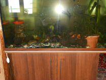Продам аквариум 300 л