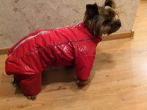 Куртка для собак девочек