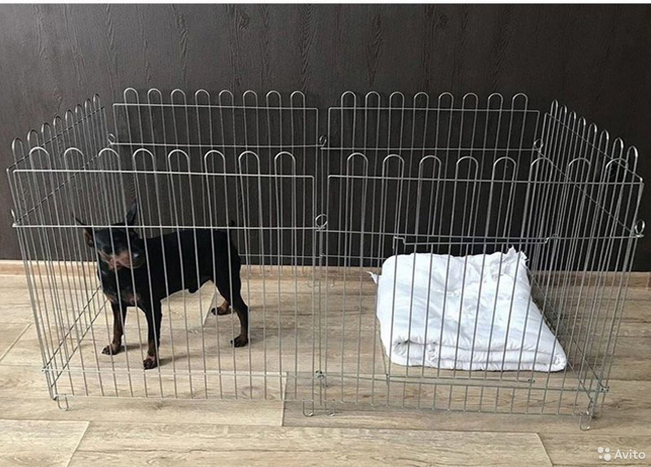Dog cage new